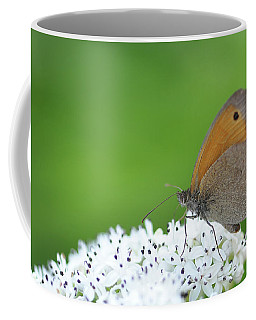 Butterfly Coffee Mug by Bess Hamiti