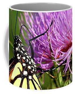 Butterfly On Bull Thistle Coffee Mug