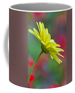 Butterfly Daisy Coffee Mug