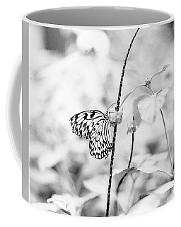Butterfly Eatting  Coffee Mug