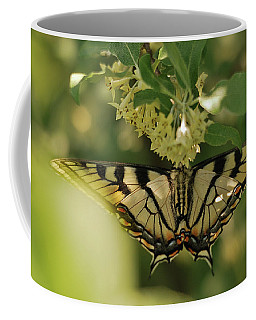 Coffee Mug featuring the photograph Butterfly From Another Side by Susan Capuano