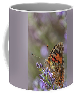 Coffee Mug featuring the photograph Butterfly In Close Up by Patricia Hofmeester