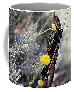 Butterfly Coffee Mug by Lawrence Burry