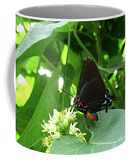 Coffee Mug featuring the photograph Butterfly by Mary Ellen Frazee