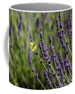 Butterfly N Lavender Coffee Mug
