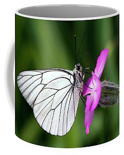 Butterfly On Flower  Coffee Mug