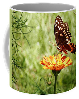 Butterfly On Orange Zinnia Coffee Mug