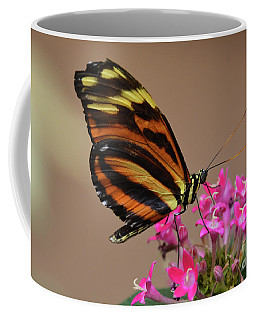 Butterfly On Pink Coffee Mug