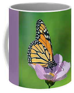 Butterfly On The Flower 3 Coffee Mug