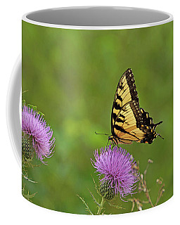 Coffee Mug featuring the photograph Butterfly On Thistle by Sandy Keeton