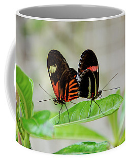 Butterfly Pair Coffee Mug