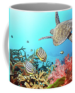 Butterflyfishes And Turtle Coffee Mug