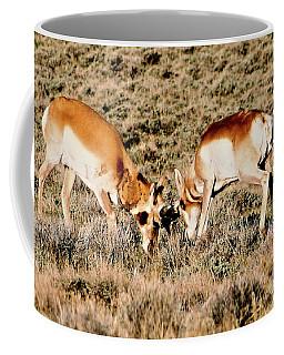 Butting Heads Coffee Mug