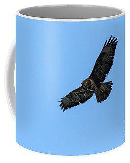 Coffee Mug featuring the photograph Buzzard 01 by Brian Roscorla