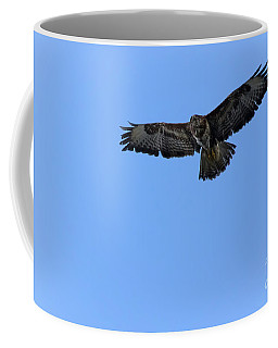 Coffee Mug featuring the photograph Buzzard 03 by Brian Roscorla