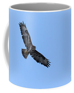 Coffee Mug featuring the photograph Buzzard 04 by Brian Roscorla