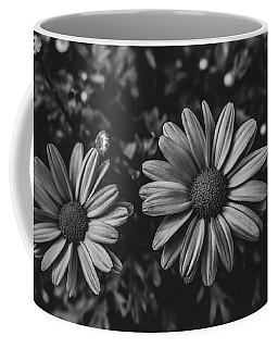 Bw Daisies Coffee Mug
