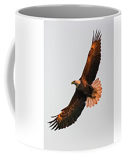 By Dawn's Early Light Coffee Mug