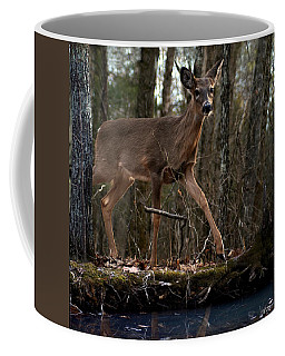 By The Stream Coffee Mug