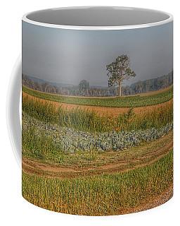 2009 - Cabbage And Pumpkin Patch Coffee Mug