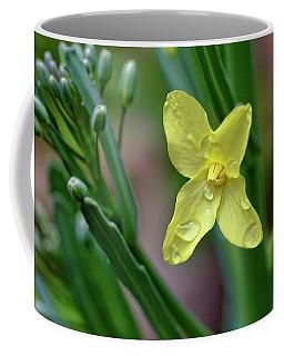 Cabbage Blossom Coffee Mug