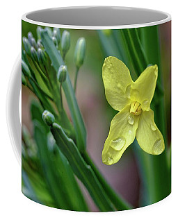 Cabbage Blossom Coffee Mug