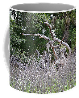 Coffee Mug featuring the photograph Cabbage Palms And Driftwood by Carol  Bradley