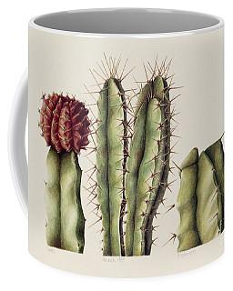 Cacti Coffee Mug