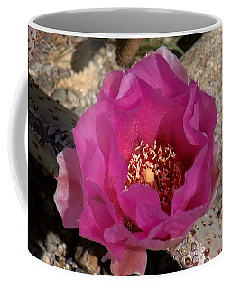 Coffee Mug featuring the photograph Cacti In Bloom by Chris Tarpening
