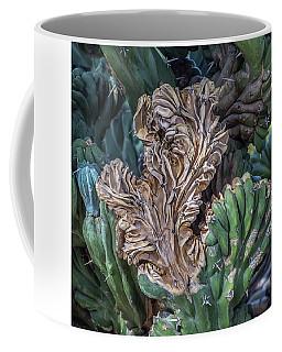 Cactus Abstract 5744-041018-1cr Coffee Mug