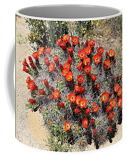 Coffee Mug featuring the photograph Cactus Bloom In Jtnp by Viktor Savchenko