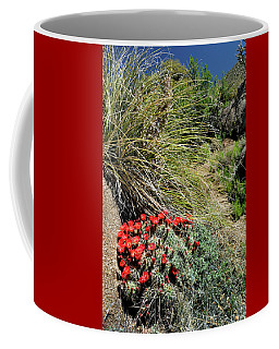 Crimson Barrel Cactus Coffee Mug