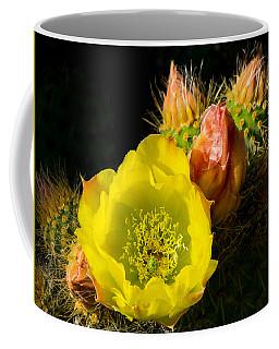 Cactus Blossom  Coffee Mug by Derek Dean