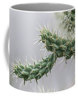 Cactus Branch With Wet White Long Needles Coffee Mug