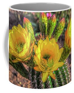 Cactus Flower Coffee Mug by Mark Dunton