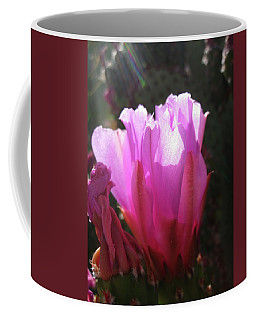 Cactus Flower Coffee Mug by Mary Ellen Frazee