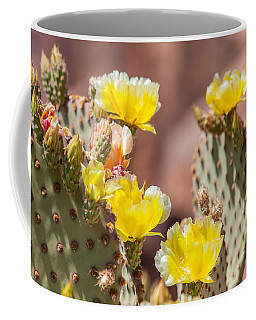 Cactus Flowers Coffee Mug