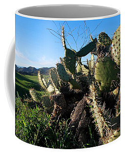 Coffee Mug featuring the photograph Cactus In The Mountains by Matt Harang