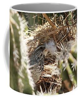 Cactus Wren Feather Coffee Mug