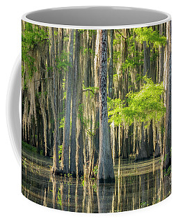 Caddo Swamp 1 Coffee Mug