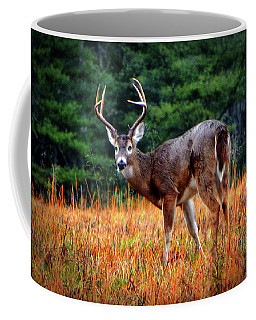 Cades Cove - The Buck Stopped Here 002 Coffee Mug by George Bostian