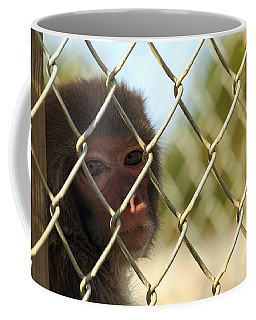 Caged Monkey Coffee Mug