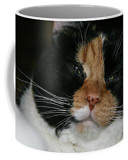 Cal-2 Coffee Mug