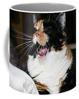 Cal-3 Coffee Mug