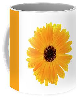 Coffee Mug featuring the photograph Calendula Flower by Elena Elisseeva
