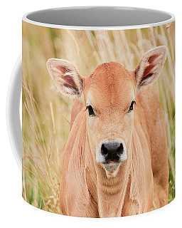 Coffee Mug featuring the photograph Calf In The High Grass by Nick Biemans