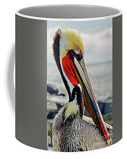 California Brown Pelican Coffee Mug by Michael Cinnamond