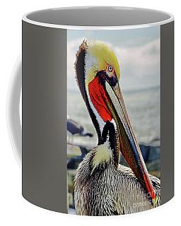 California Brown Pelican Coffee Mug