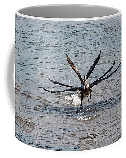 California Brown Pelicans Flying In Tandem Coffee Mug