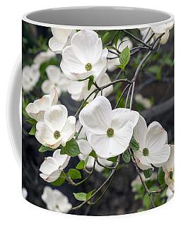 California Dogwood Coffee Mug
